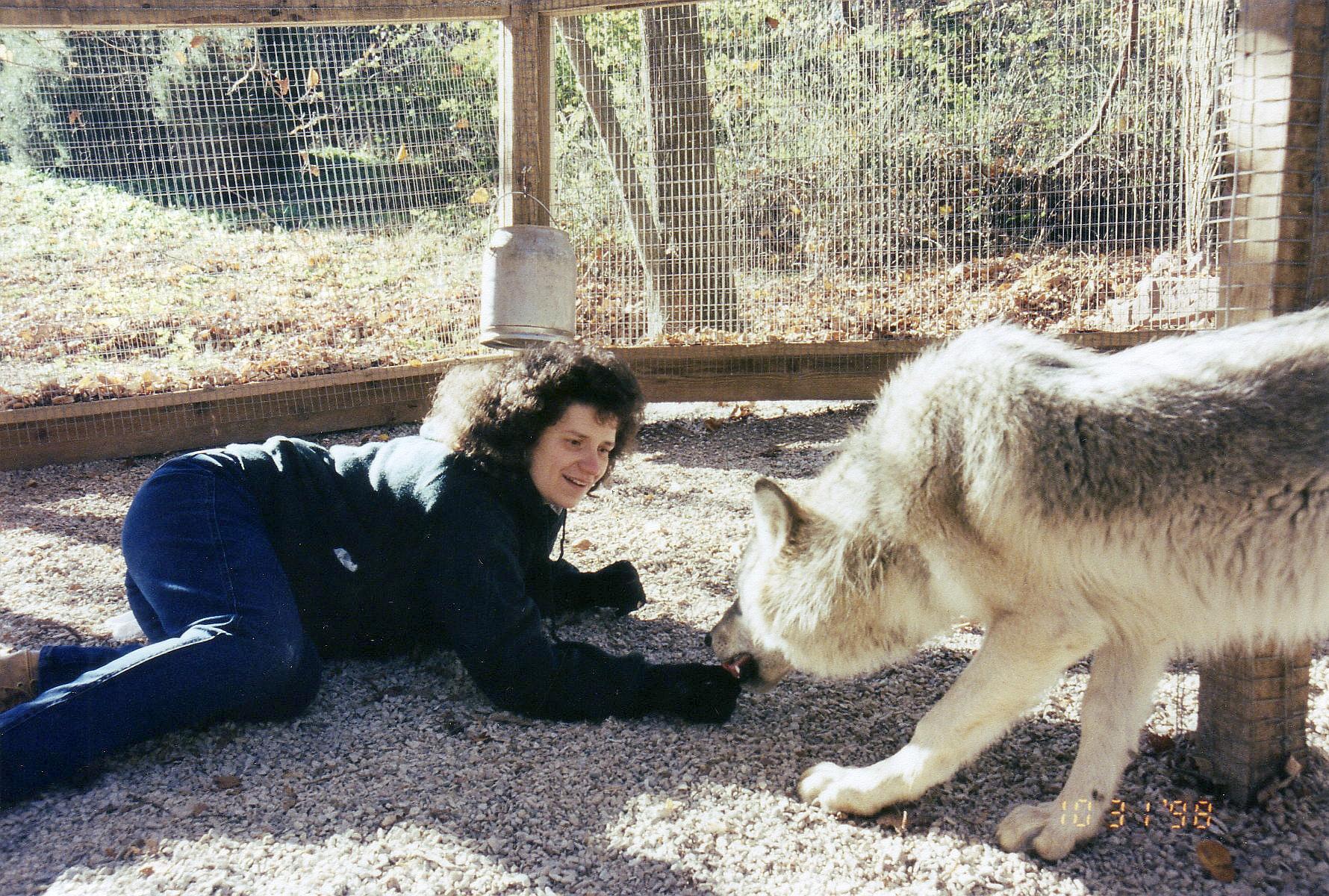 Wolves Kimbertal Kennels